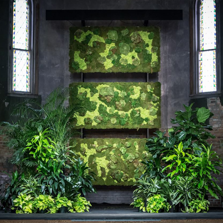 Moss and Living Walls Service